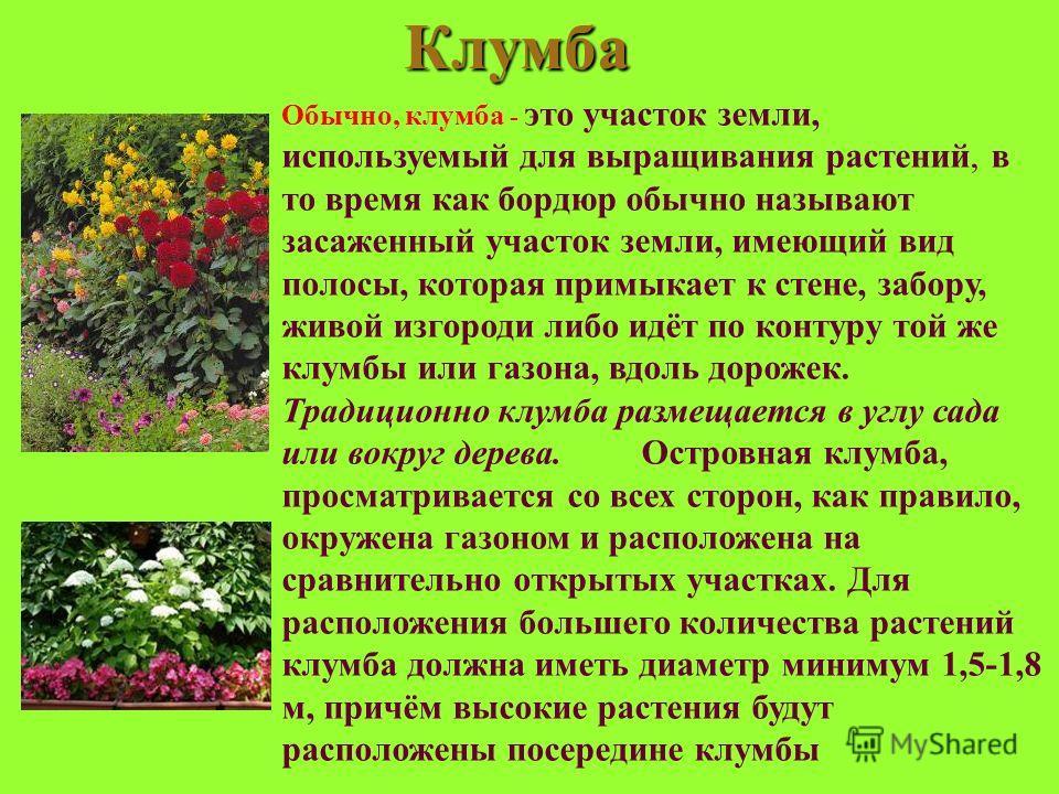 Клумба Обычно, клумба - это участок земли, используемый для выращивания растений, в то время как бордюр обычно называют засаженный участок земли, имеющий вид полосы, которая примыкает к стене, забору, живой изгороди либо идёт по контуру той же клумбы