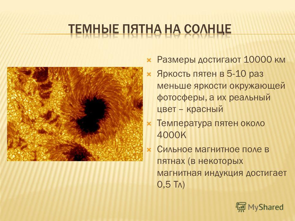 Размеры достигают 10000 км Яркость пятен в 5-10 раз меньше яркости окружающей фотосферы, а их реальный цвет – красный Температура пятен около 4000К Сильное магнитное поле в пятнах (в некоторых магнитная индукция достигает 0,5 Тл)