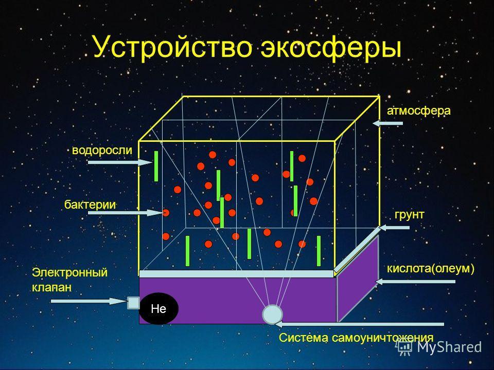 Устройство экосферы грунт атмосфера бактерии водоросли кислота(олеум) He Электронный клапан Система самоуничтожения