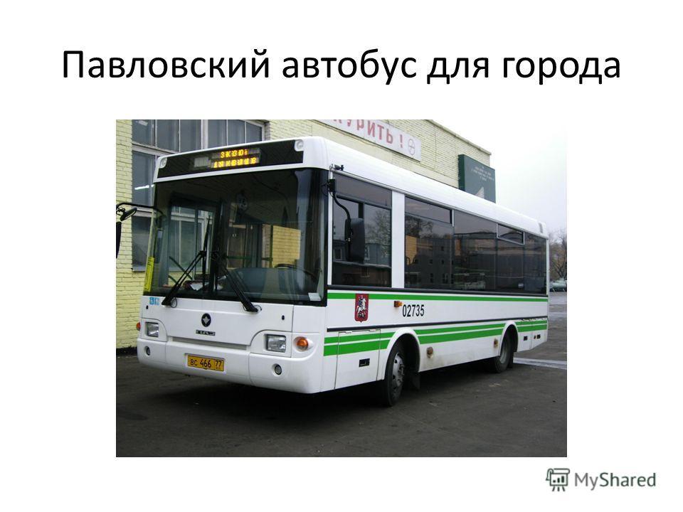 Павловский автобус для города