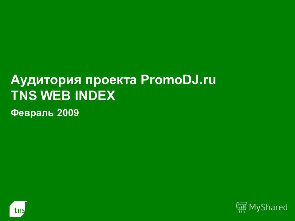 1 Аудитория проекта PromoDJ.ru TNS WEB INDEX Февраль 2009