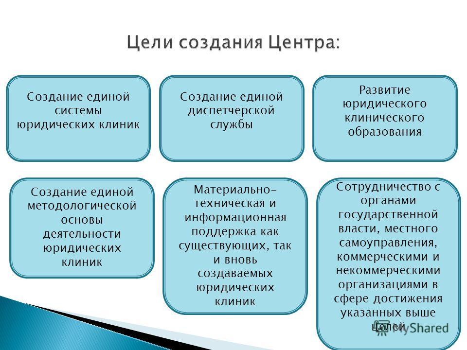 Создание единой системы юридических клиник Создание единой диспетчерской службы Развитие юридического клинического образования Создание единой методологической основы деятельности юридических клиник Материально- техническая и информационная поддержка