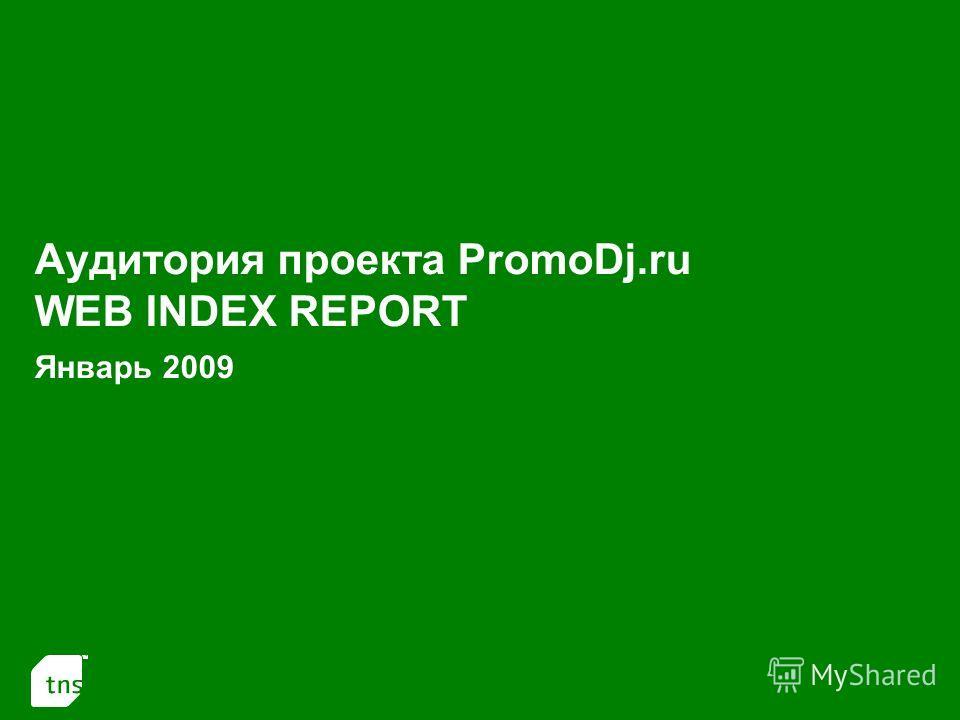 1 Аудитория проекта PromoDj.ru WEB INDEX REPORT Январь 2009