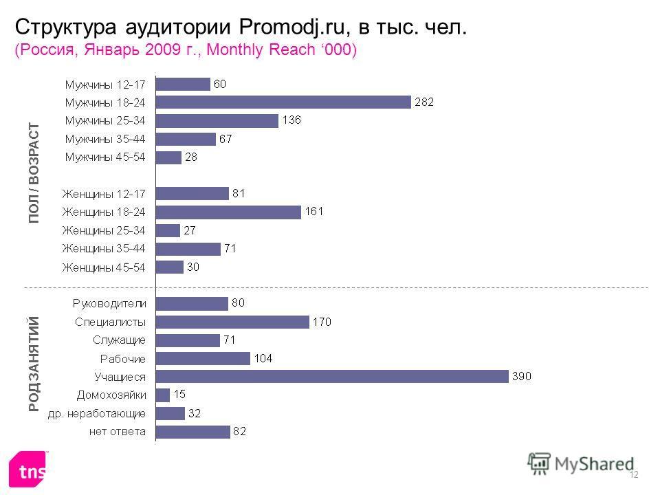 12 Структура аудитории Promodj.ru, в тыс. чел. (Россия, Январь 2009 г., Monthly Reach 000) ПОЛ / ВОЗРАСТ РОД ЗАНЯТИЙ