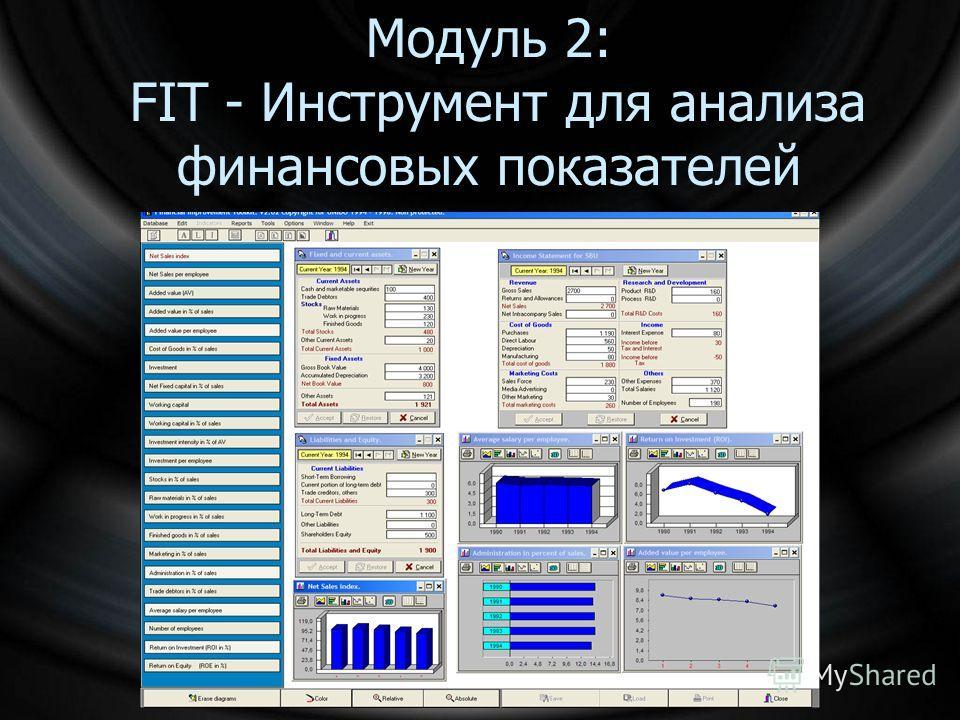 Модуль 2: FIT - Инструмент для анализа финансовых показателей