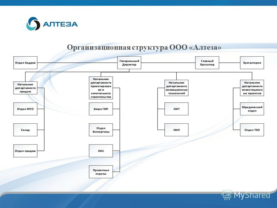 Организационная структура ООО «Алтеза»