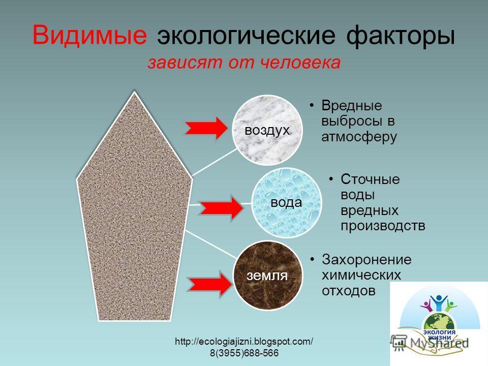 Видимые экологические факторы зависят от человека воздух Вредные выбросы в атмосферу вода Сточные воды вредных производств земля Захоронение химических отходов http://ecologiajizni.blogspot.com/ 8(3955)688-566