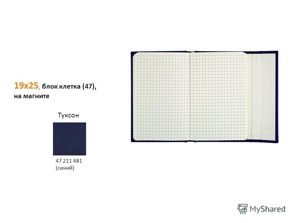 19х25, блок клетка (47), на магните Туксон 47 211 481 (синий)