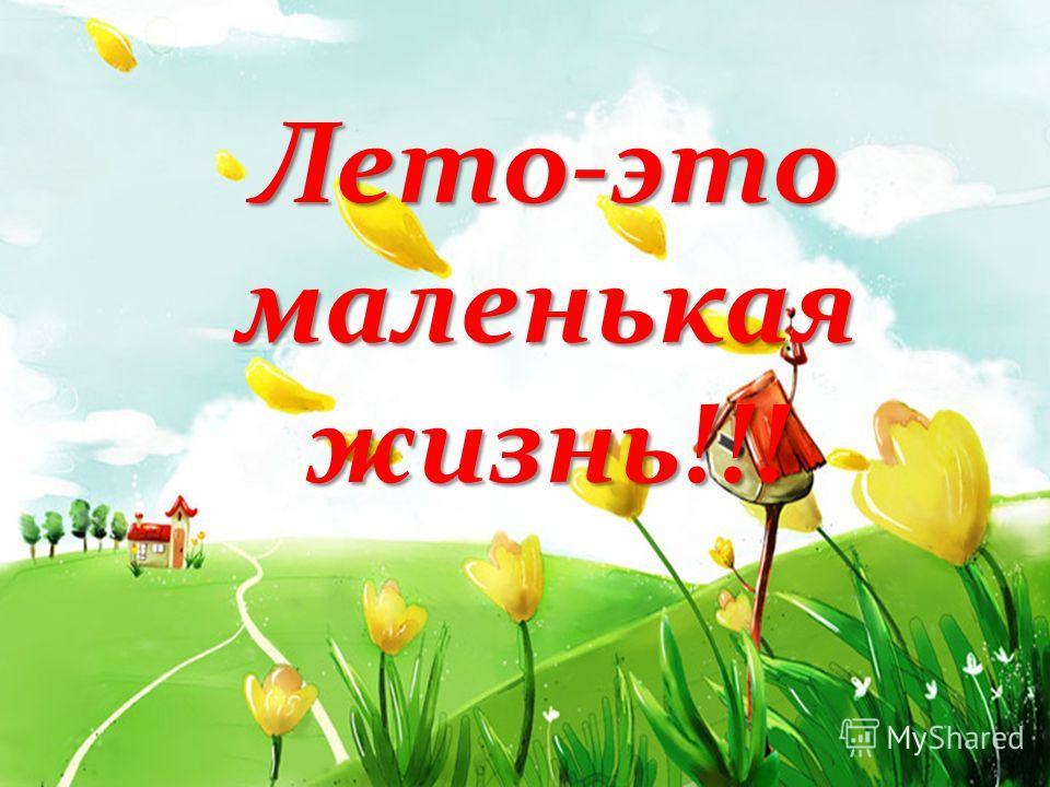 Лето-это маленькая жизнь!!!