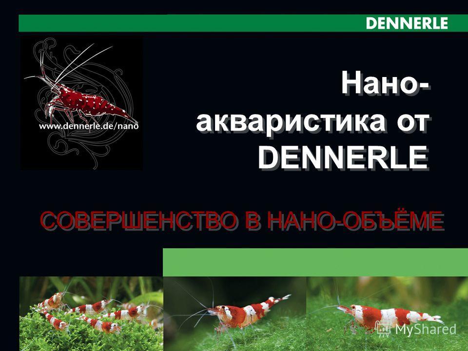 1 Нано- акваристика от DENNERLE СОВЕРШЕНСТВО В НАНО-ОБЪЁМЕ