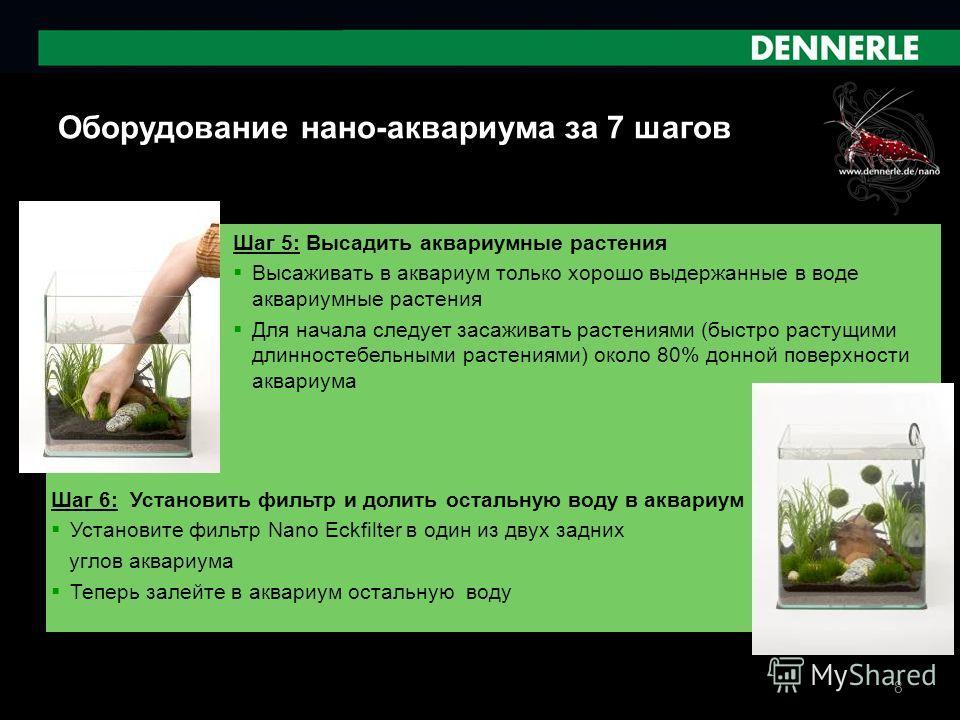 8 Оборудование нано-аквариума за 7 шагов Шаг 5: Высадить аквариумные растения Высаживать в аквариум только хорошо выдержанные в воде аквариумные растения Для начала следует засаживать растениями (быстро растущими длинностебельными растениями) около 8
