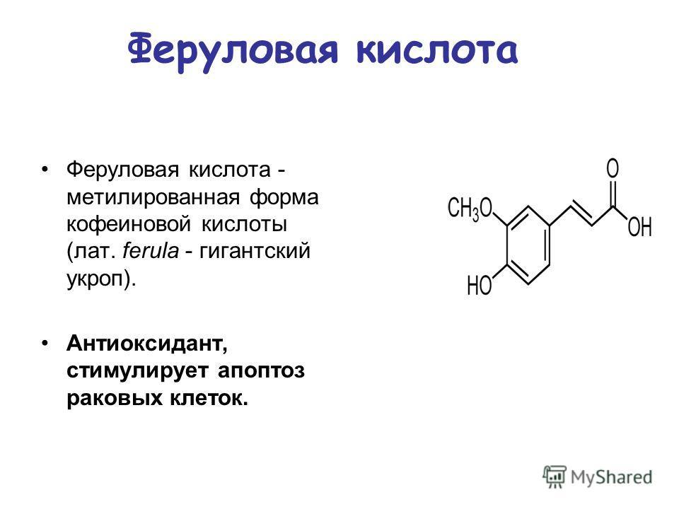 Феруловая кислота - метилированная форма кофеиновой кислоты (лат. ferula - гигантский укроп). Антиоксидант, стимулирует апоптоз раковых клеток. Феруловая кислота