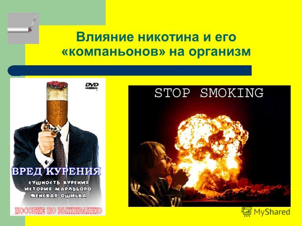 Влияние никотина и его «компаньонов» на организм