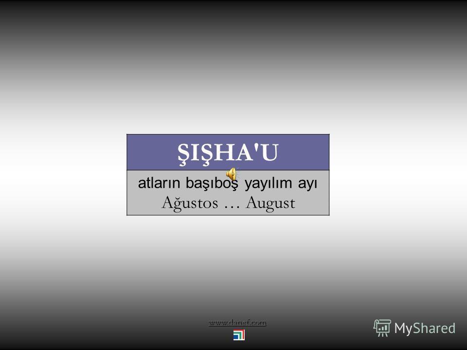 www.danef.com BEZ'EWOĞ sinek çoğalma ayı Temmuz … July