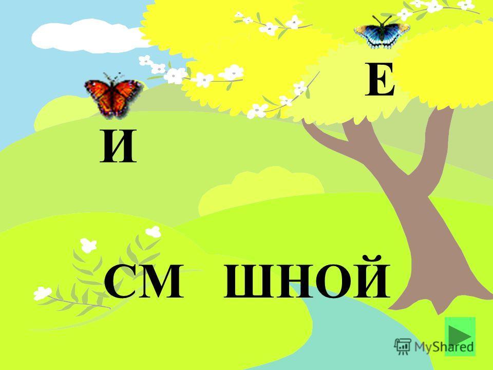СМ ШНОЙ Е И