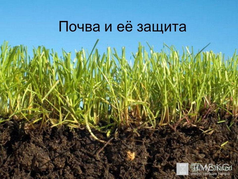 Почва и её защита