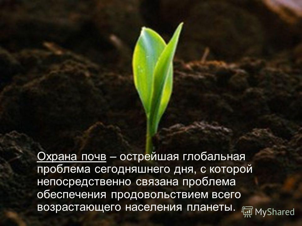 Охрана почв – острейшая глобальная проблема сегодняшнего дня, с которой непосредственно связана проблема обеспечения продовольствием всего возрастающего населения планеты.