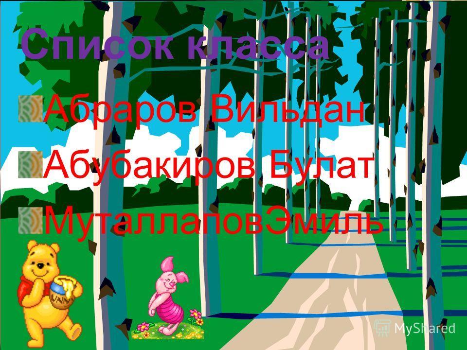 Список класса Абраров Вильдан Абубакиров Булат МуталлаповЭмиль Список класса