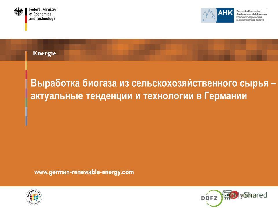 Energie Выработка биогаза из сельскохозяйственного сырья – актуальные тенденции и технологии в Германии www.german-renewable-energy.com