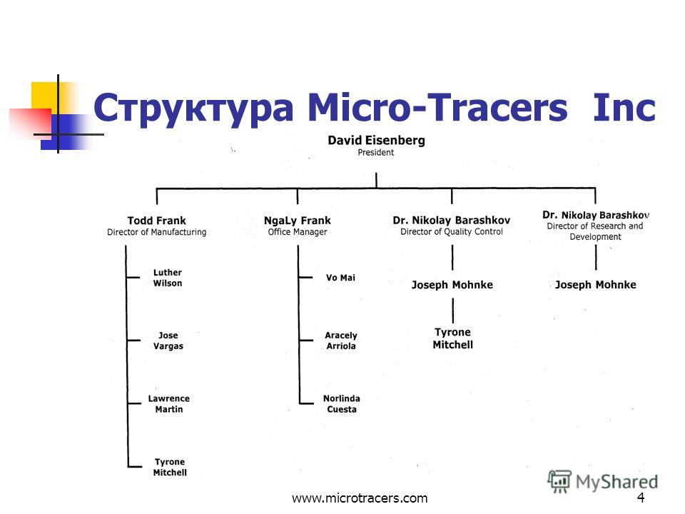 www.microtracers.com4 Структура Micro-Tracers Inc