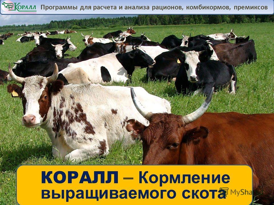 КОРАЛЛ – Кормление выращиваемого скота Программы для расчета и анализа рационов, комбикормов, премиксов