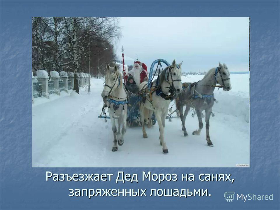 Разъезжает Дед Мороз на санях, запряженных лошадьми.