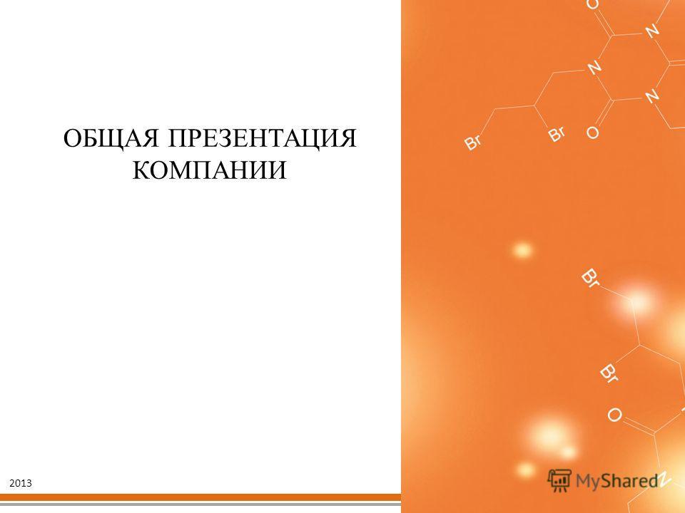 ОБЩАЯ ПРЕЗЕНТАЦИЯ КОМПАНИИ 2013