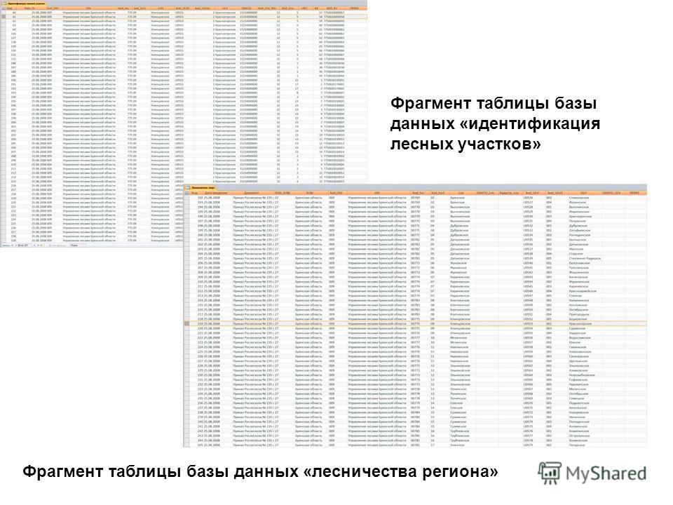 Фрагмент таблицы базы данных «идентификация лесных участков» Фрагмент таблицы базы данных «лесничества региона»