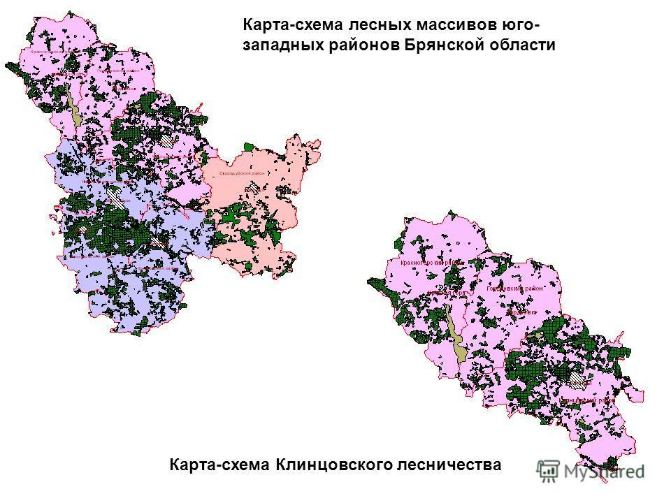 Карта-схема лесных массивов