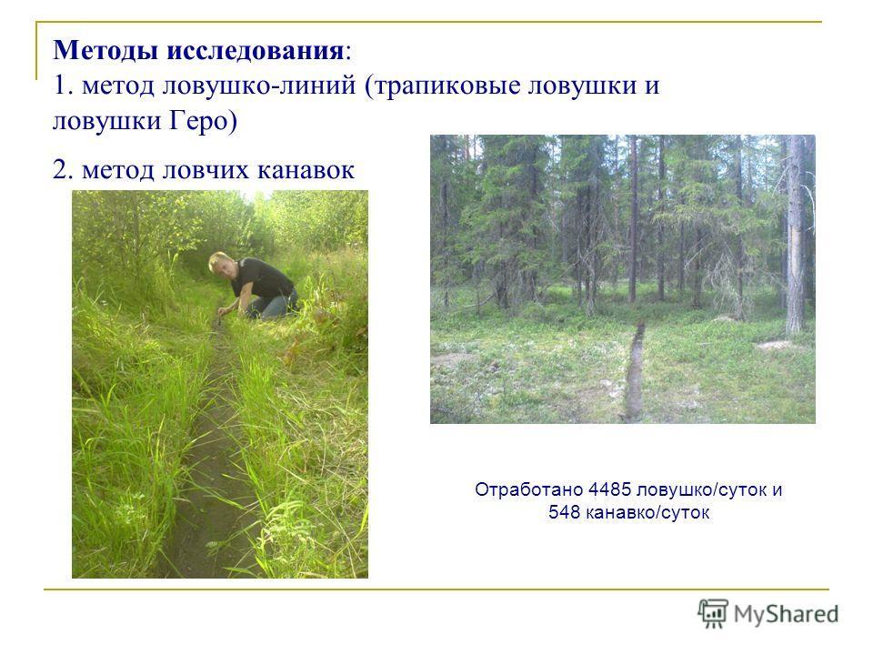 Методы исследования: 1. метод ловушко-линий (трапиковые ловушки и ловушки Геро) 2. метод ловчих канавок Отработано 4485 ловушко/суток и 548 канавко/суток