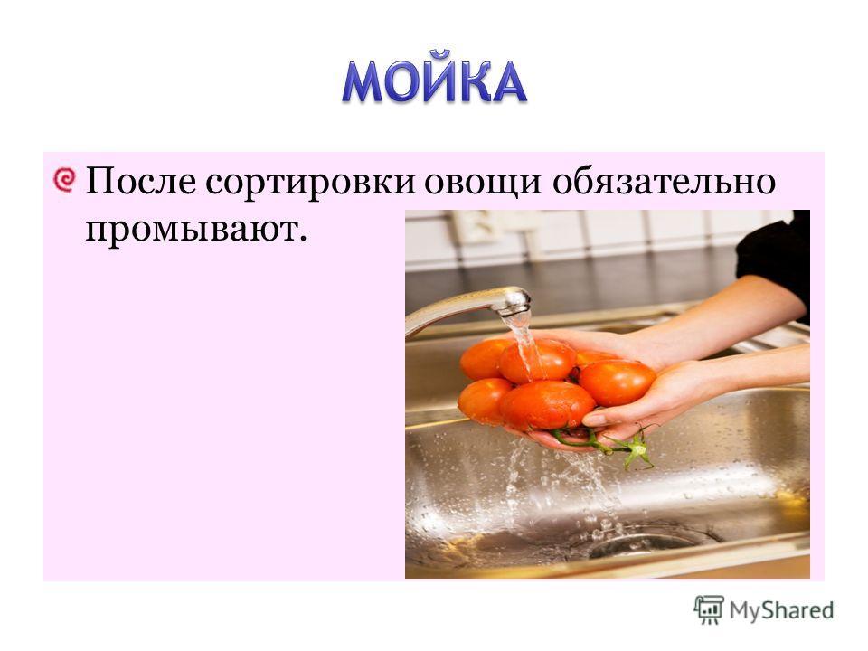 После сортировки овощи обязательно промывают.