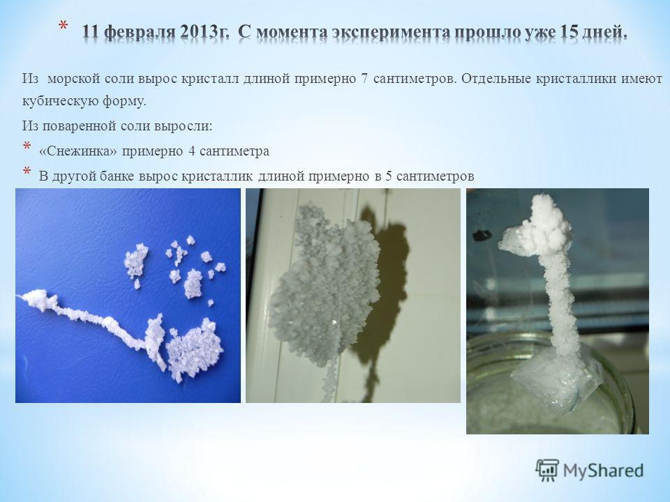 Из морской соли вырос кристалл длиной примерно 7 сантиметров. Отдельные кристаллики имеют кубическую форму. Из поваренной соли выросли: * «Снежинка» примерно 4 сантиметра * В другой банке вырос кристаллик длиной примерно в 5 сантиметров