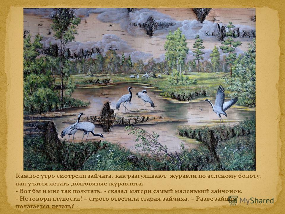 Каждое утро смотрели зайчата, как разгуливают журавли по зеленому болоту, как учатся летать долговязые журавлята. - Вот бы и мне так полетать, - сказал матери самый маленький зайчонок. - Не говори глупости! – строго ответила старая зайчиха. – Разве з