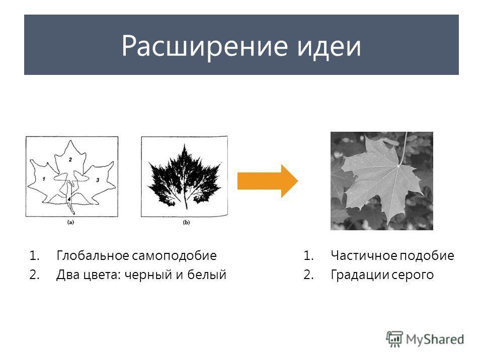 Расширение идеи 1.Глобальное самоподобие 2.Два цвета: черный и белый 1.Частичное подобие 2.Градации серого