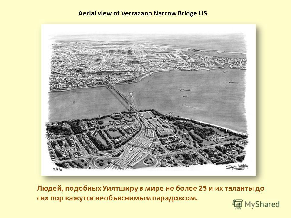 Людей, подобных Уилтширу в мире не более 25 и их таланты до сих пор кажутся необъяснимым парадоксом. Aerial view of Verrazano Narrow Bridge US