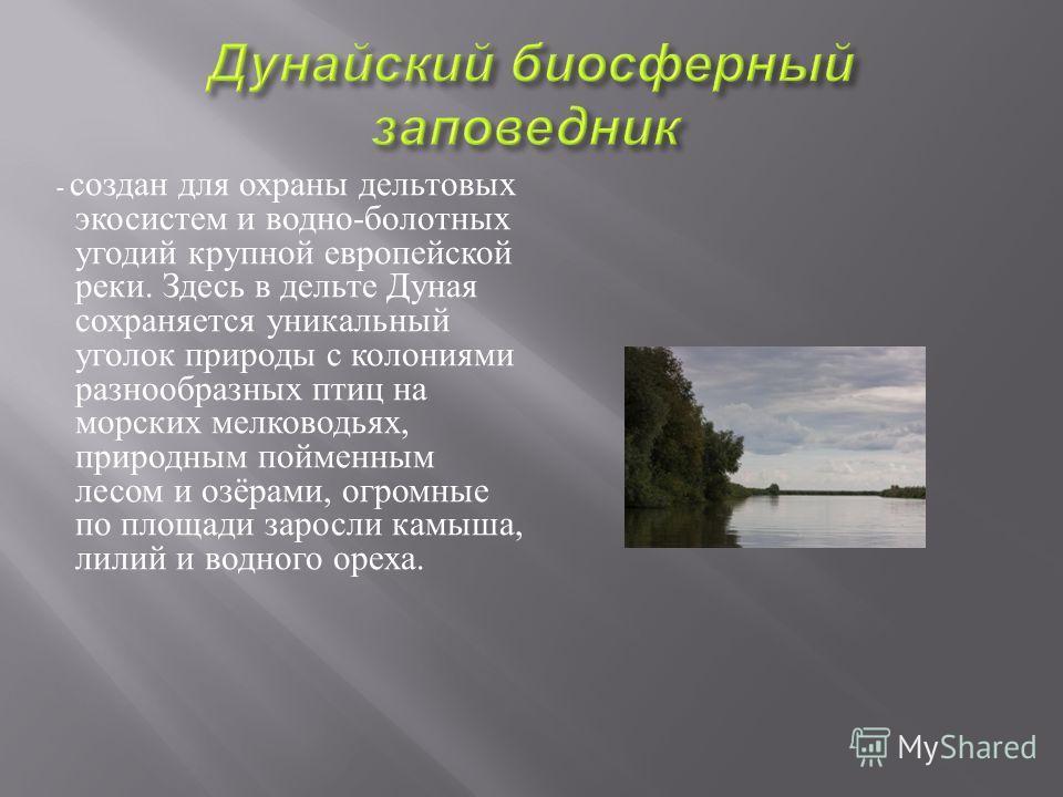 - создан для охраны дельтовых экосистем и водно - болотных угодий крупной европейской реки. Здесь в дельте Дуная сохраняется уникальный уголок природы с колониями разнообразных птиц на морских мелководьях, природным пойменным лесом и озёрами, огромны
