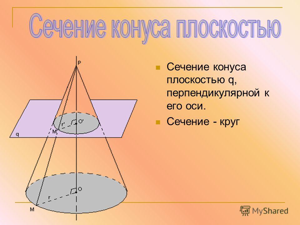 Сечение конуса плоскостью q, перпендикулярной к его оси. Сечение - круг