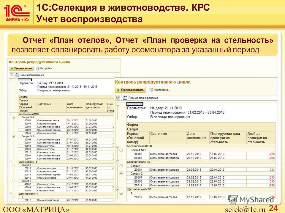 24 Отчет «План отелов», Отчет «План проверка на стельность» позволяет спланировать работу осеменатора за указанный период. 1С:Селекция в животноводстве. КРС Учет воспроизводства ООО «МАТРИЦА» selek@1c.ru