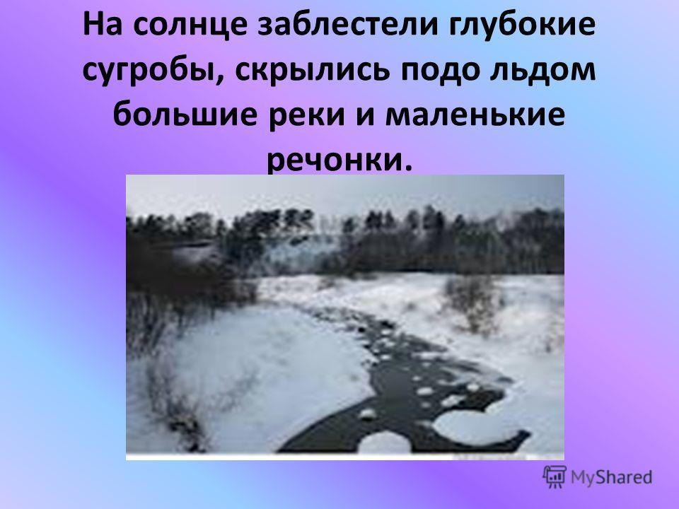 На солнце заблестели глубокие сугробы, скрылись подо льдом большие реки и маленькие речонки.