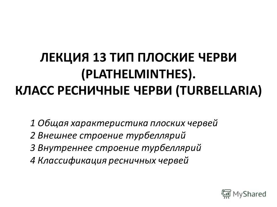 ЛЕКЦИЯ 13 ТИП ПЛОСКИЕ ЧЕРВИ (PLATHELMINTHES). КЛАСС РЕСНИЧНЫЕ ЧЕРВИ (TURBELLARIA) 1 Общая характеристика плоских червей 2 Внешнее строение турбеллярий 3 Внутреннее строение турбеллярий 4 Классификация ресничных червей