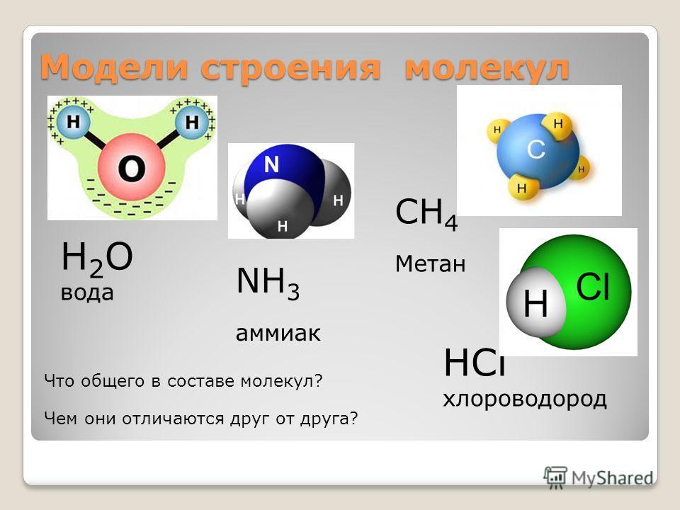 Модели строения молекул H 2 O вода NH 3 аммиак CH 4 Метан HCl хлороводород Что общего в составе молекул? Чем они отличаются друг от друга?