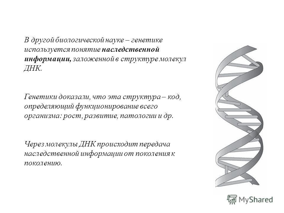 В другой биологической науке – генетике используется понятие наследственной информации, заложенной в структуре молекул ДНК. Генетики доказали, что эта структура – код, определяющий функционирование всего организма: рост, развитие, патологии и др. Чер