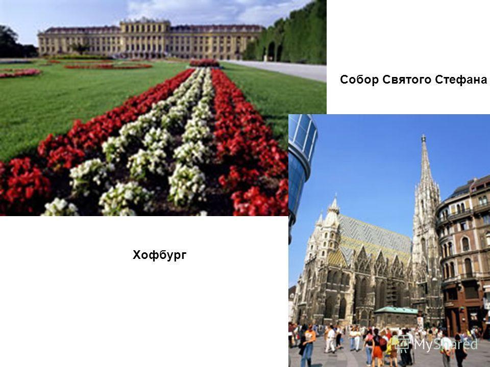 Вена – столица музыки…страна Моцарта, Бетховена, Штрауса. Венская опера Памятник Иоганну Штраусу.