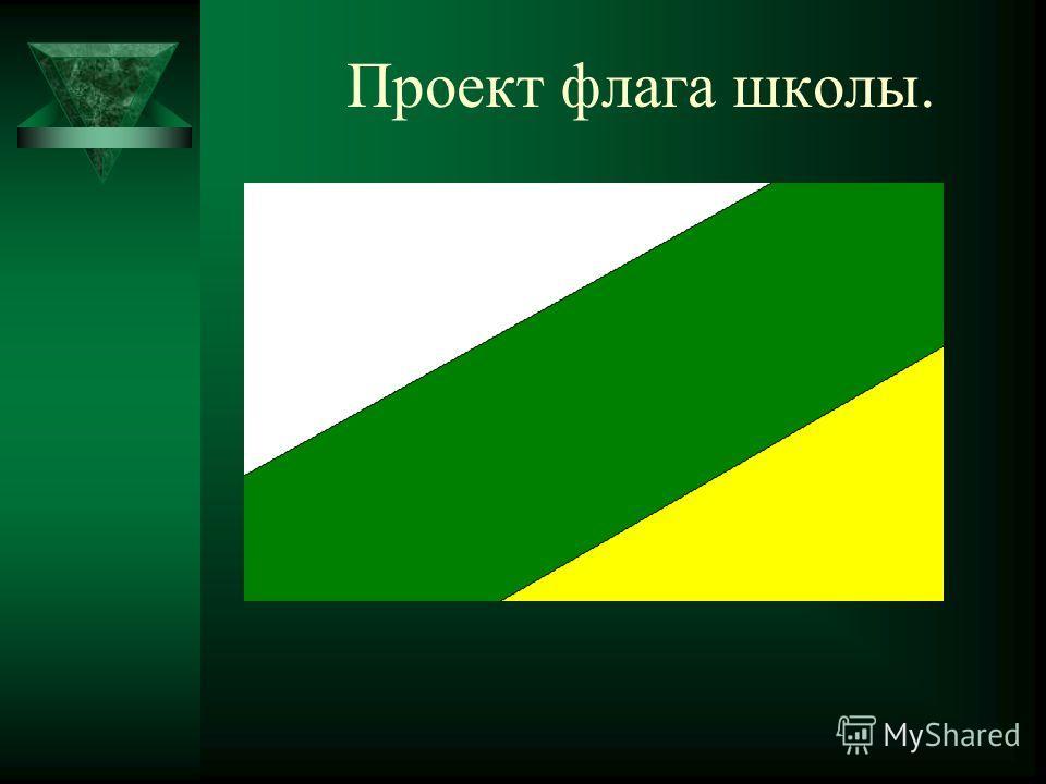 Проект флага школы.