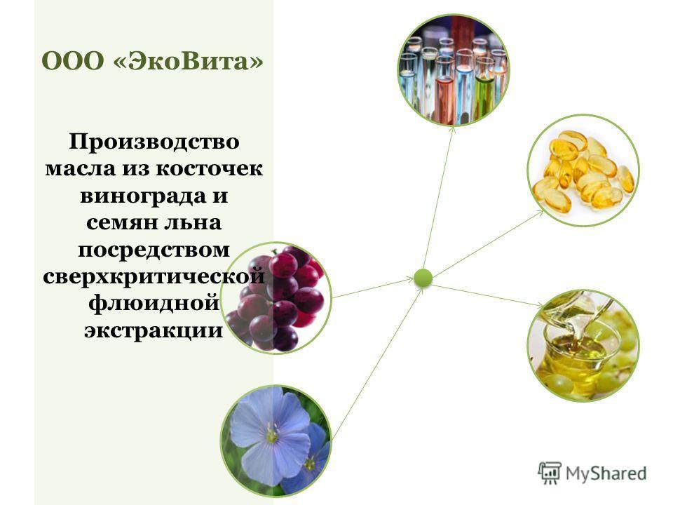 ООО «ЭкоВита» Производство масла из косточек винограда и семян льна посредством сверхкритической флюидной экстракции