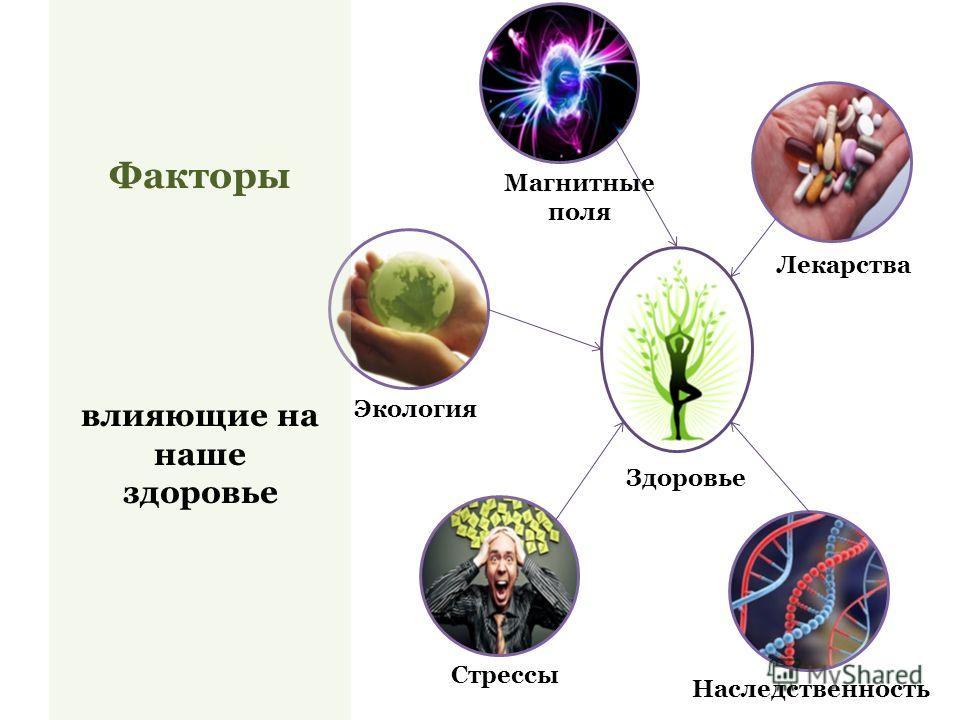 Факторы влияющие на наше здоровье Здоровье Экология Стрессы Наследственность Лекарства Магнитные поля