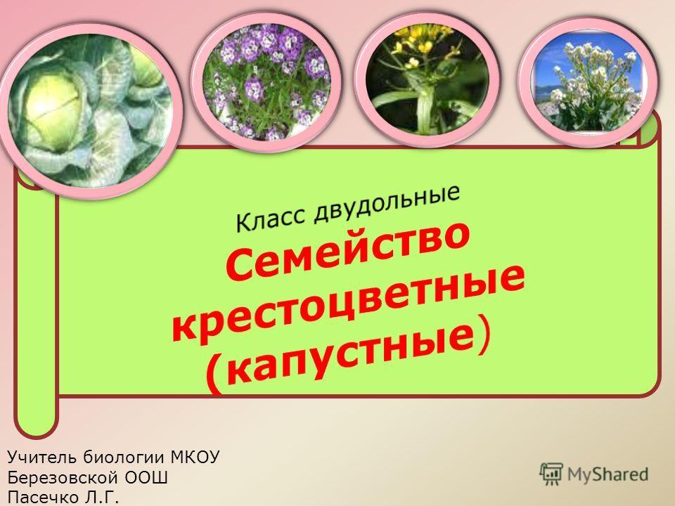 Учитель биологии МКОУ Березовской ООШ Пасечко Л.Г.