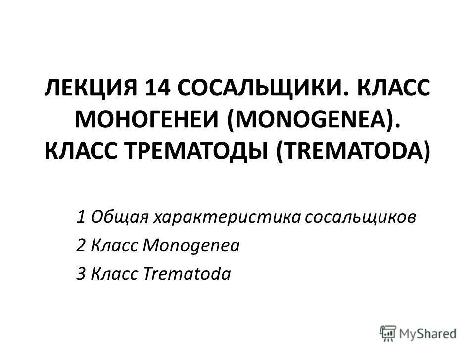 ЛЕКЦИЯ 14 СОСАЛЬЩИКИ. КЛАСС МОНОГЕНЕИ (MONOGENEA). КЛАСС ТРЕМАТОДЫ (TREMATODA) 1 Общая характеристика сосальщиков 2 Класс Monogenea 3 Класс Trematoda
