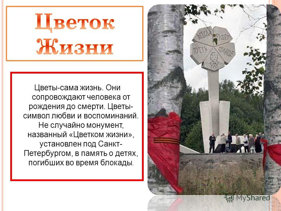 Цветы-сама жизнь. Они сопровождают человека от рождения до смерти. Цветы- символ любви и воспоминаний. Не случайно монумент, названный «Цветком жизни», установлен под Санкт- Петербургом, в память о детях, погибших во время блокады.