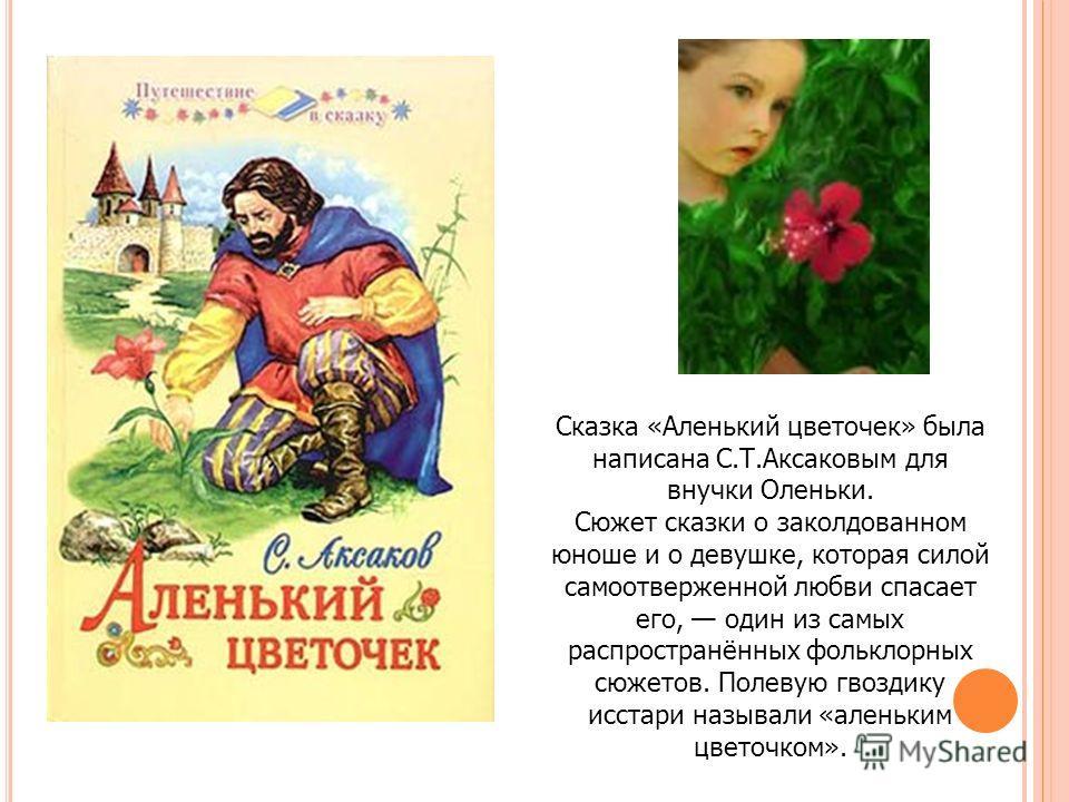 Сказка «Аленький цветочек» была написана С.Т.Аксаковым для внучки Оленьки. Сюжет сказки о заколдованном юноше и о девушке, которая силой самоотверженной любви спасает его, один из самых распространённых фольклорных сюжетов. Полевую гвоздику исстари н